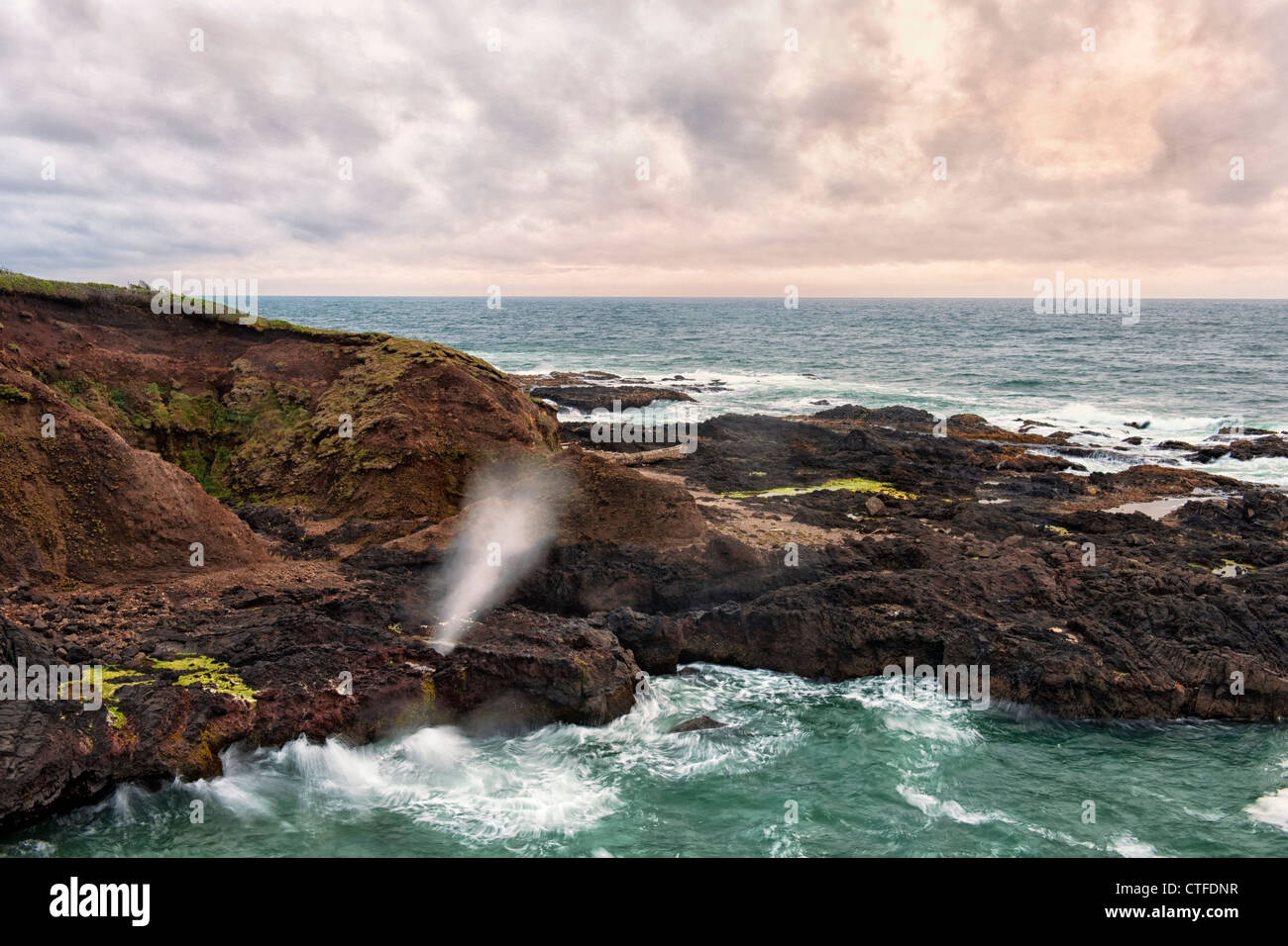 The Pacific Ocean explodes out of the basalt blowhole named Spouting Horn at Oregon's Cape Perpetua Scenic Area. - Stock Image