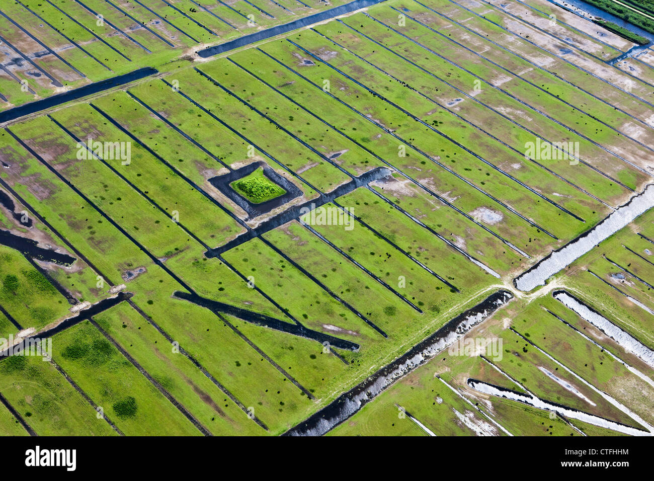 The Netherlands, Almere, Marshland. Aerial. - Stock Image