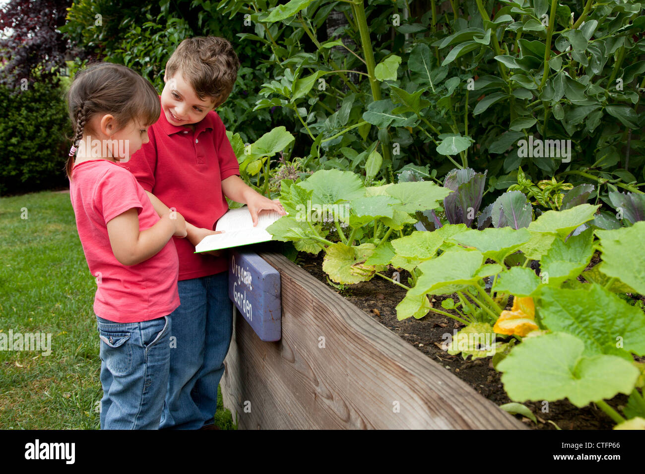 A boy and girl are looking at plants in a backyard garden. - Stock Image