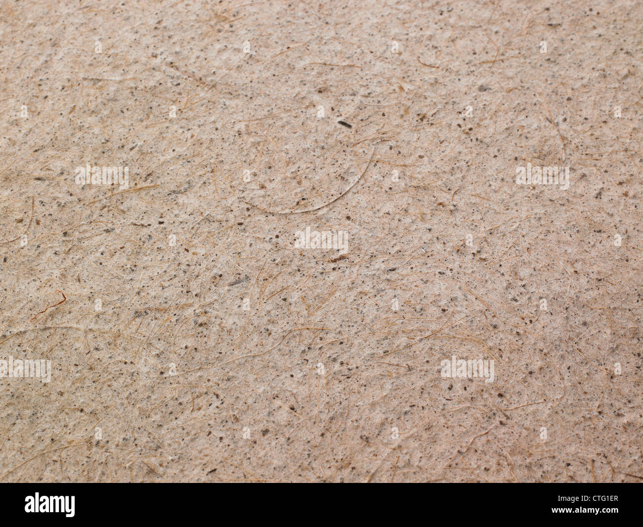 parchment paper background brown tan crinkled - Stock Image