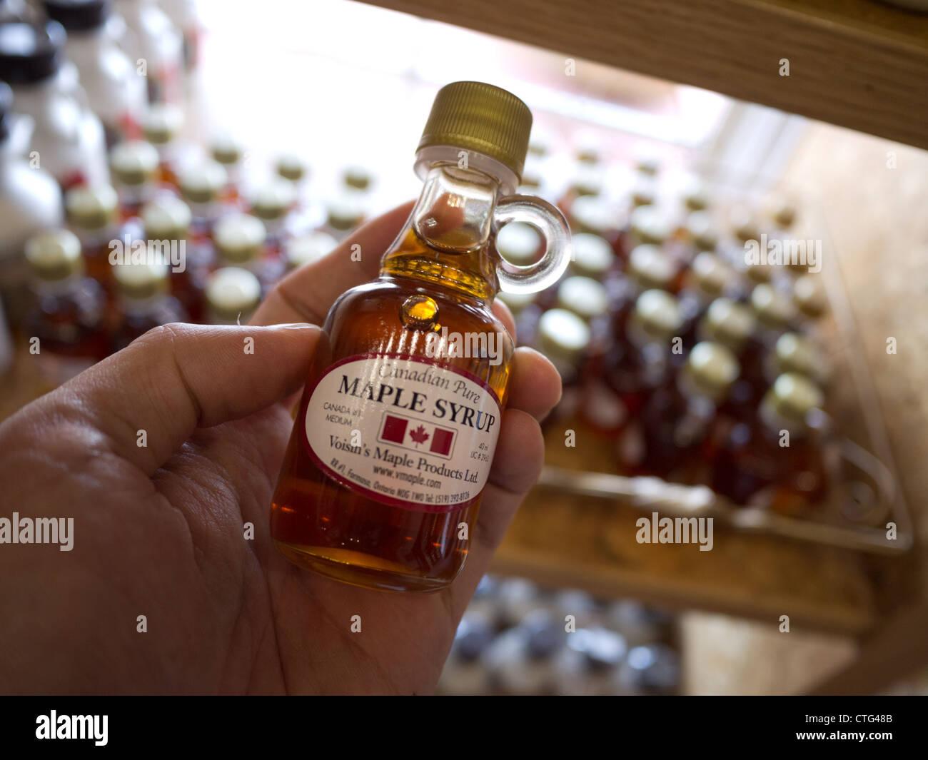 maple syrup bottle hand holding canada - Stock Image