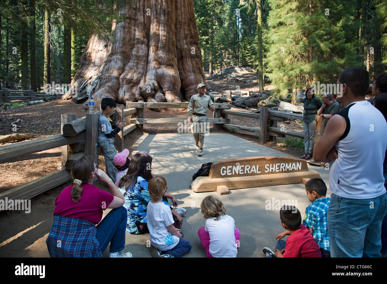A volunteer park ranger in Sequoia National Park talks to visitors about the General Sherman, the world's largest living tree Stock Photo