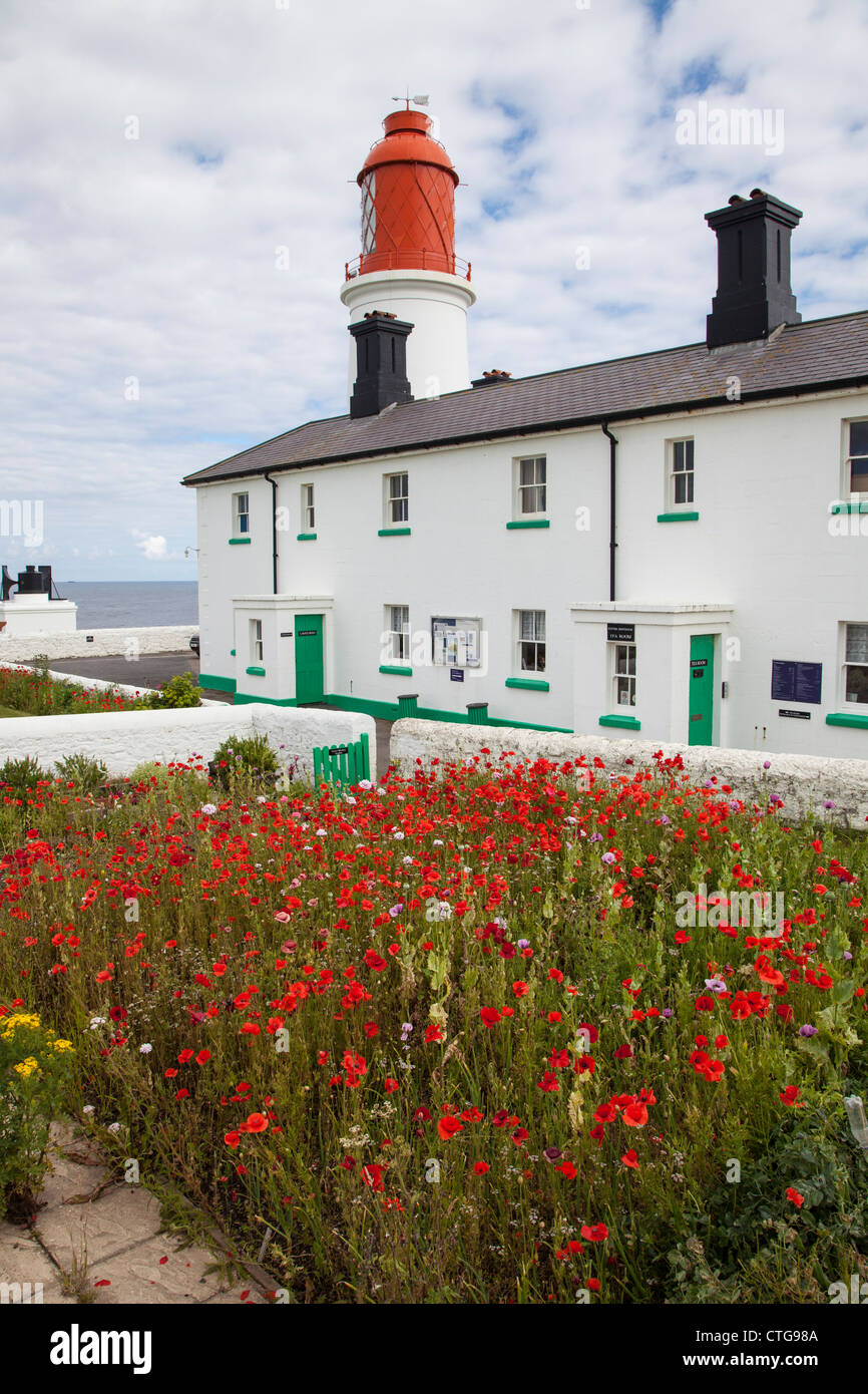 Souter Lighthouse, Whitburn, near Sunderland, Tyne and Wear, UK - Stock Image