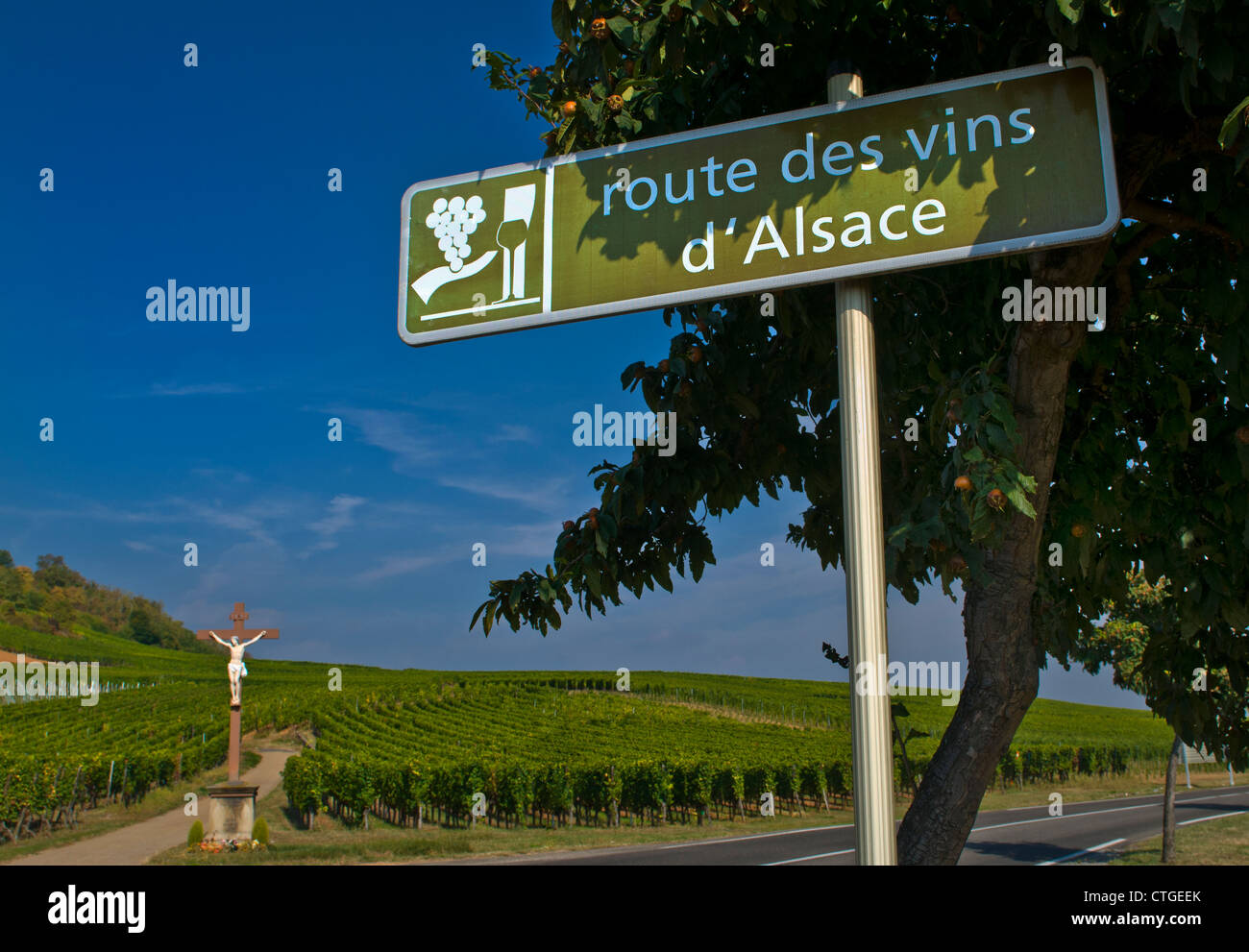 Route des Vins d' Alsace road sign in the vineyards near Riquewihr - Stock Image