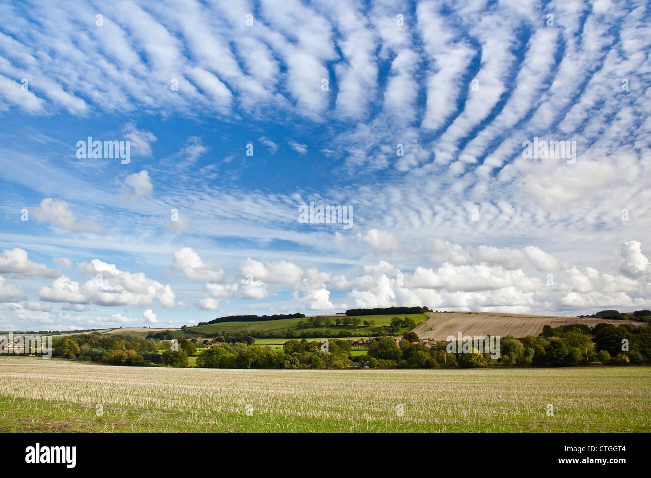 A view of the English countryside with white clouds and blue sky, Knighton Hill, Broad Chalke Wiltshire - Stock Image