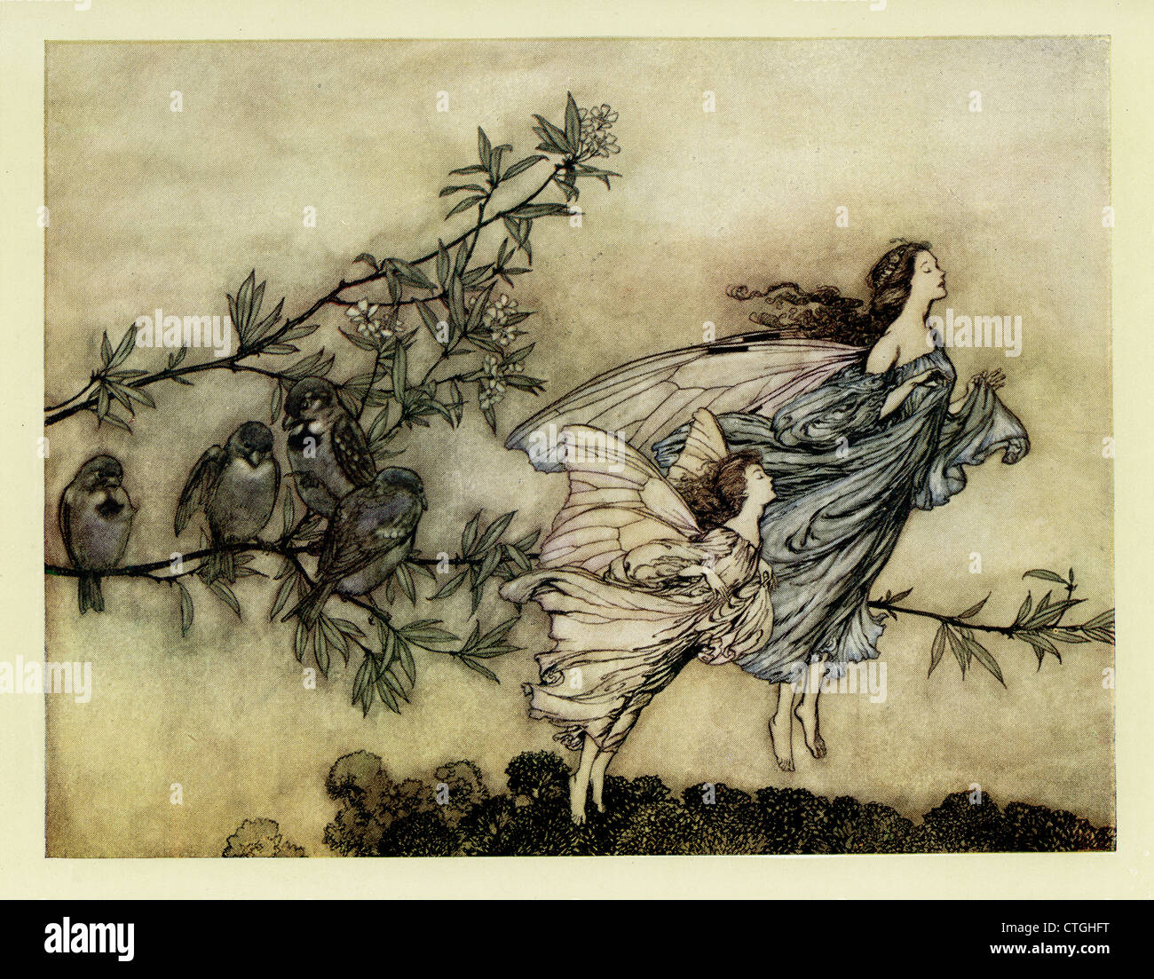 Illustration by Arthur Rackham from Peter Pan in Kensington Gardens. The fairies have their tiffs with the birds. - Stock Image