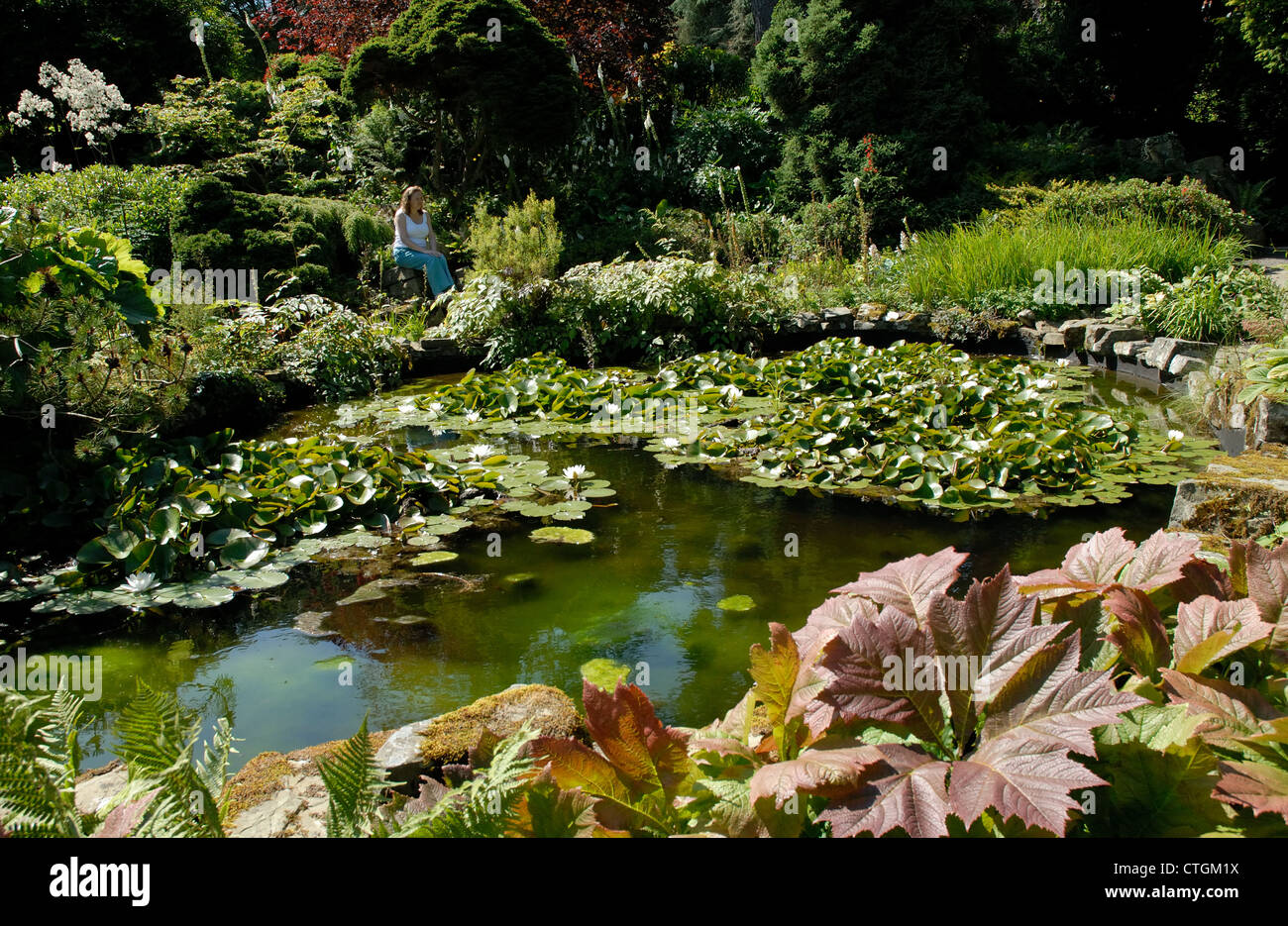 A woman by a pond at Hergest Croft Gardens, Kington, Herefordshire - Stock Image