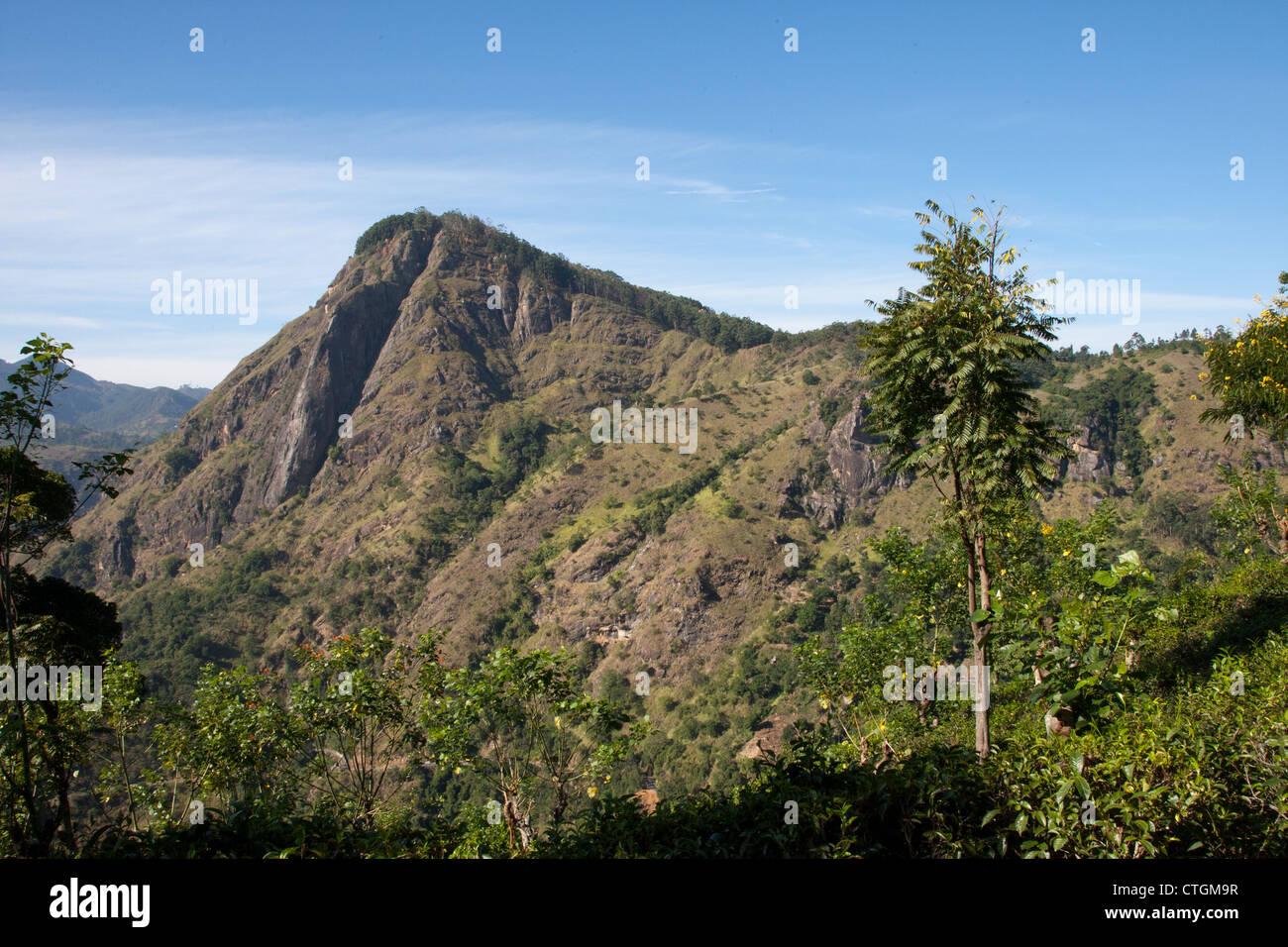 c8d2d4510 view through the beautiful Ella Gap from Little Adams Peak near Ella ...