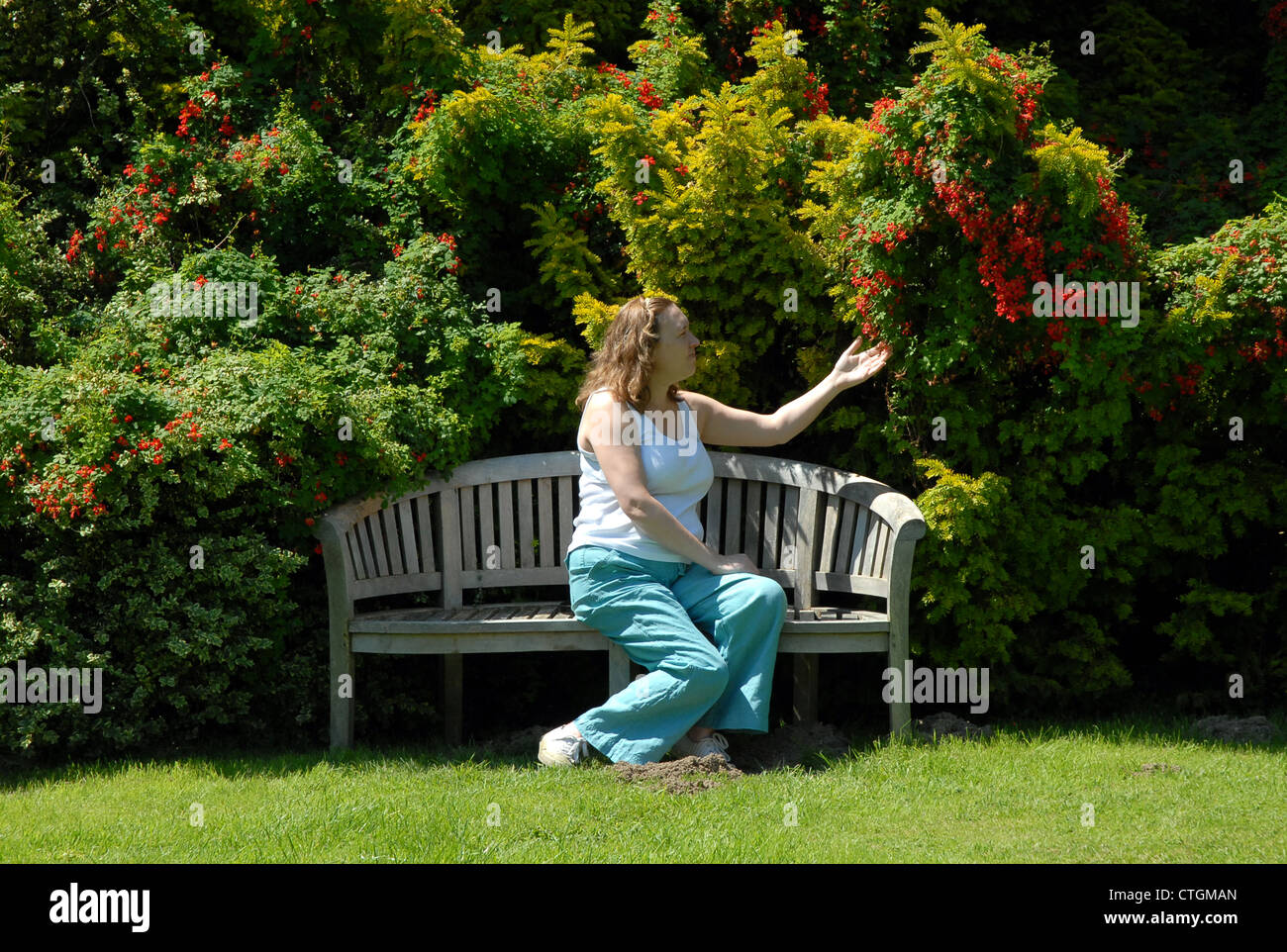 A woman admires flowers at Hergest Croft Gardens in Kington, Herefordshire. - Stock Image