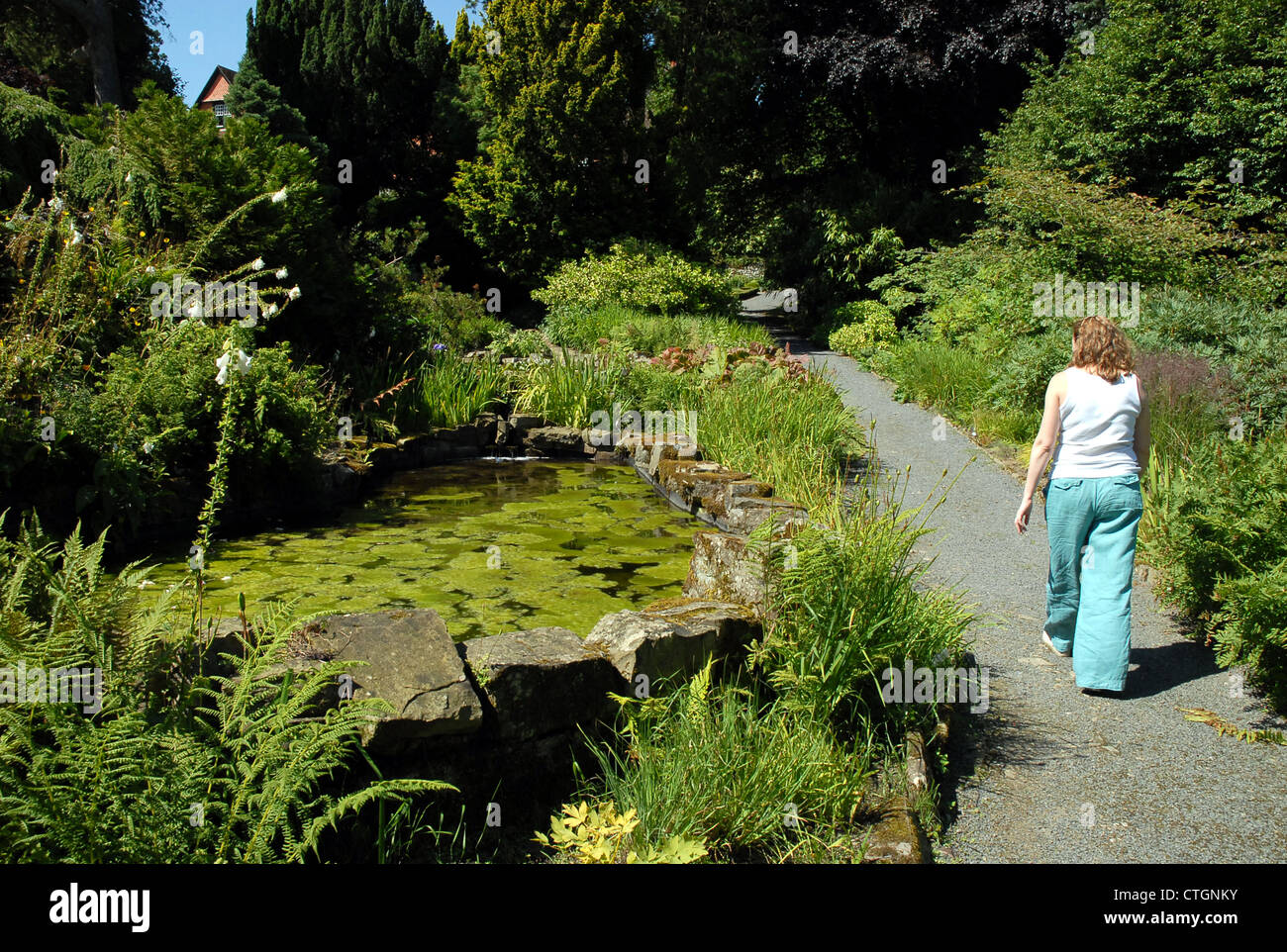 A woman walks by  a pool at Hergest Croft Gardens, Kington, Herefordshire. - Stock Image