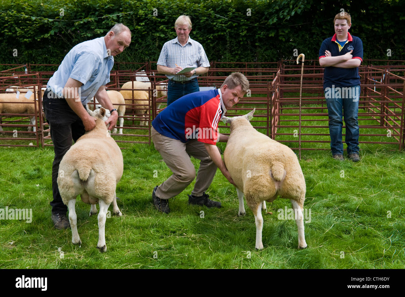 Country Show Stock Photos & Country Show Stock Images - Alamy