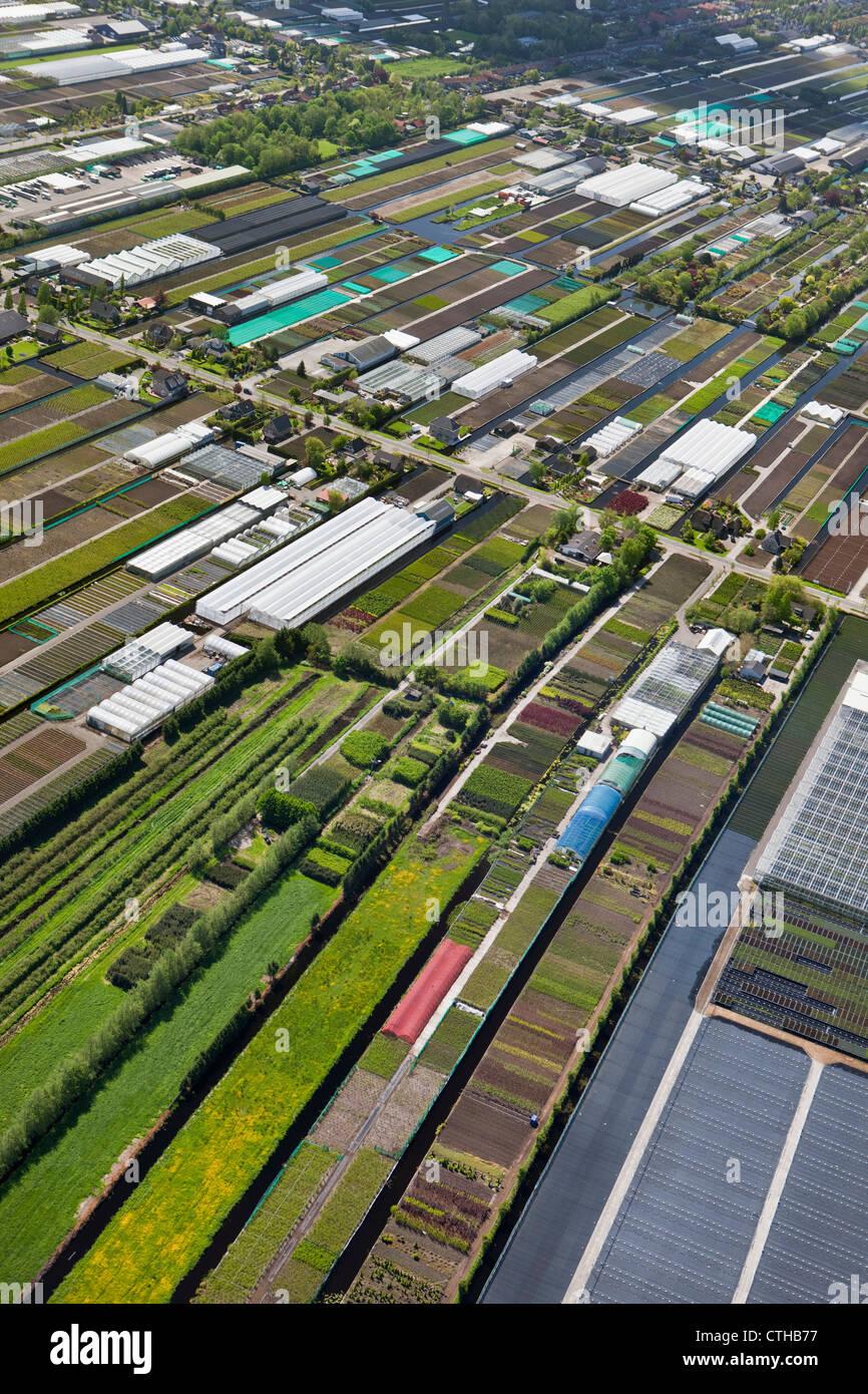 The Netherlands, Boskoop, Horticulture. Aerial. - Stock Image