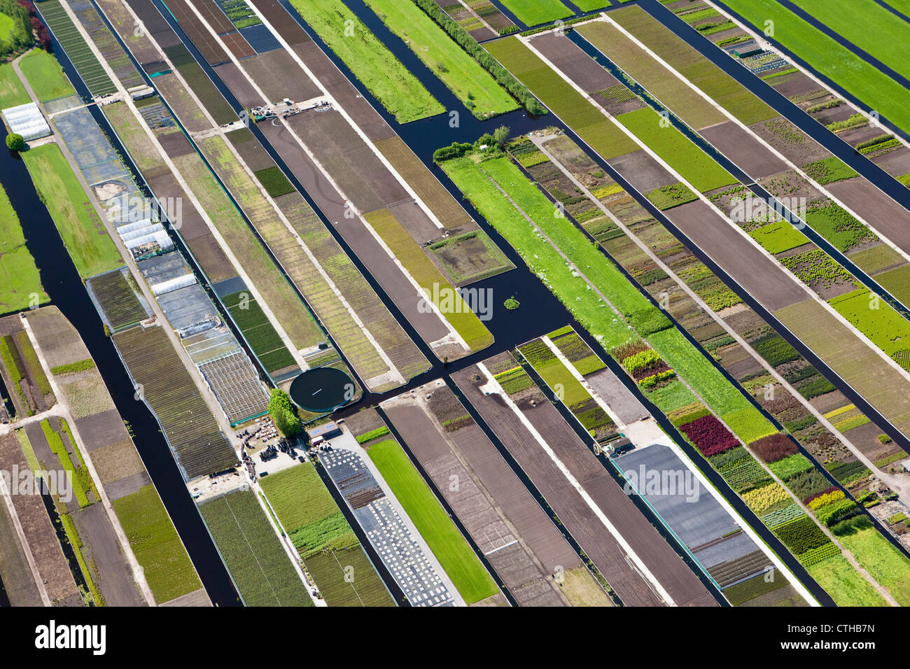 The Netherlands, Boskoop, Horticulture. Aerial. - Stock Image