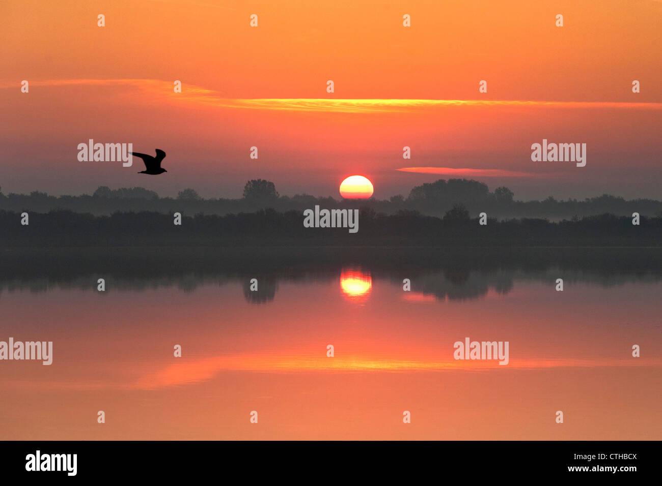 The Netherlands, Zierikzee, Sunrise. - Stock Image