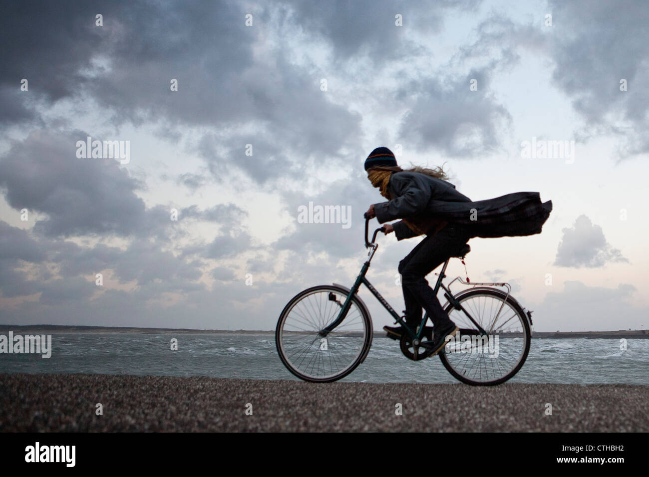 The Netherlands, Kamperland, Woman cycling against the stormy wind. Stock Photo