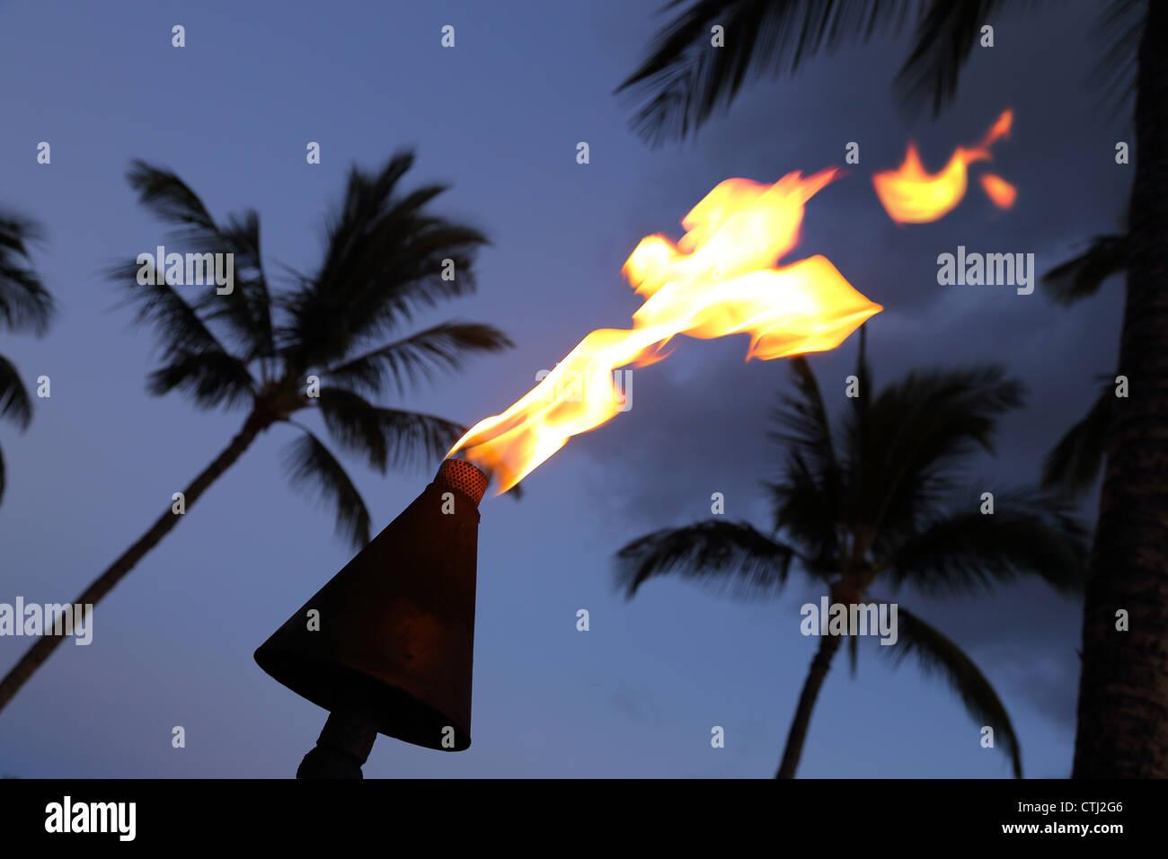 Flaming torch and palm trees at night, Hawaii Stock Photo