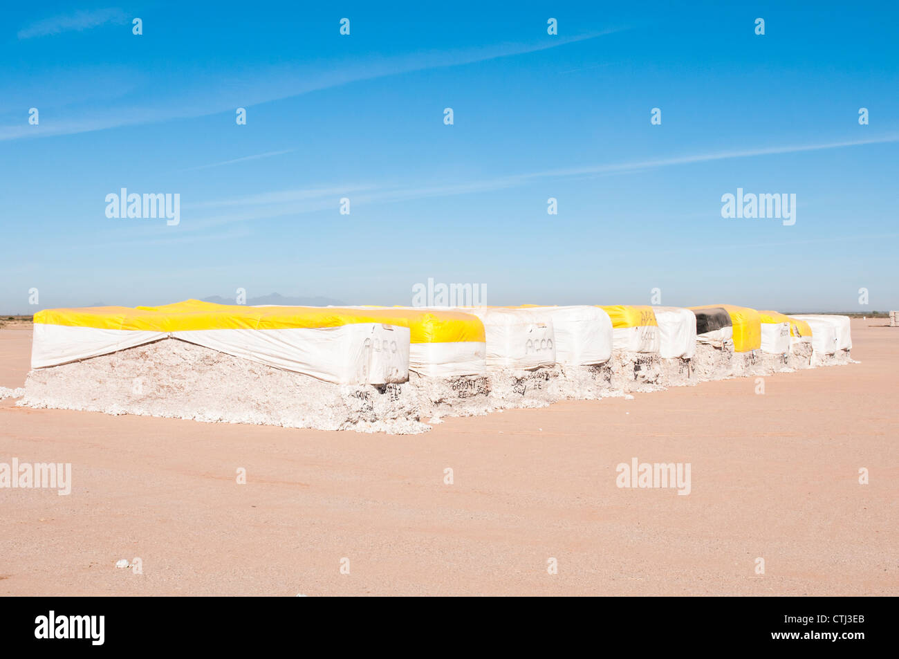 Cotton modules are stored at a cotton gin before processing. - Stock Image