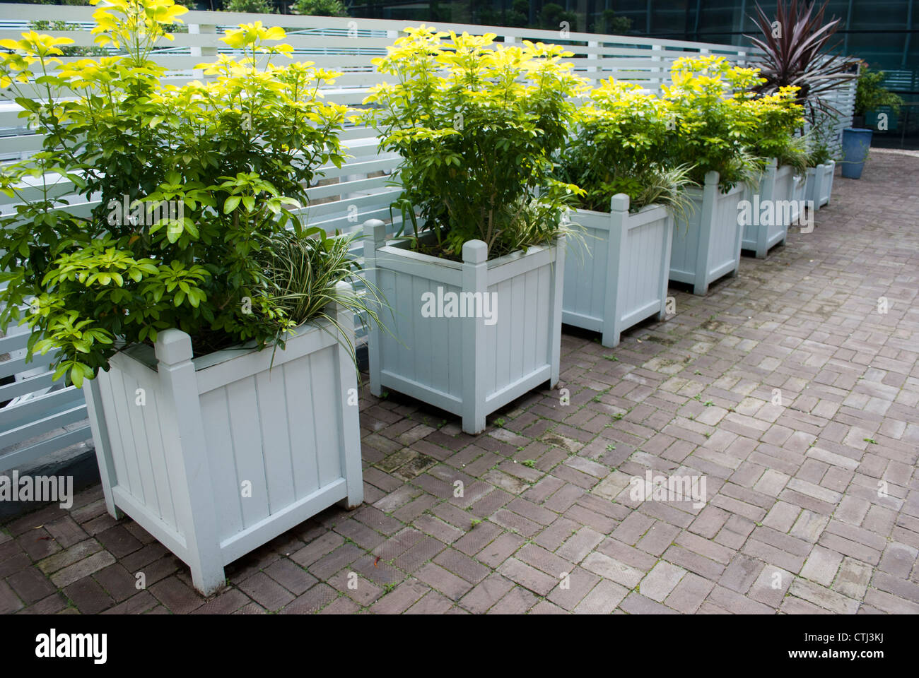 and excellent was worth place i my easy planters make minutes think dollars painted of it to planter these taste