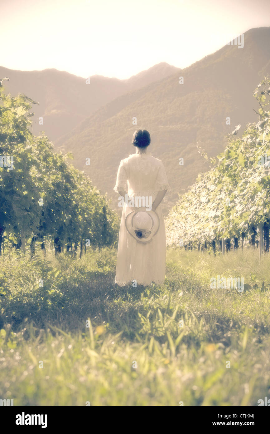 a woman in a white, Victorian dress is walking through vineyards - Stock Image
