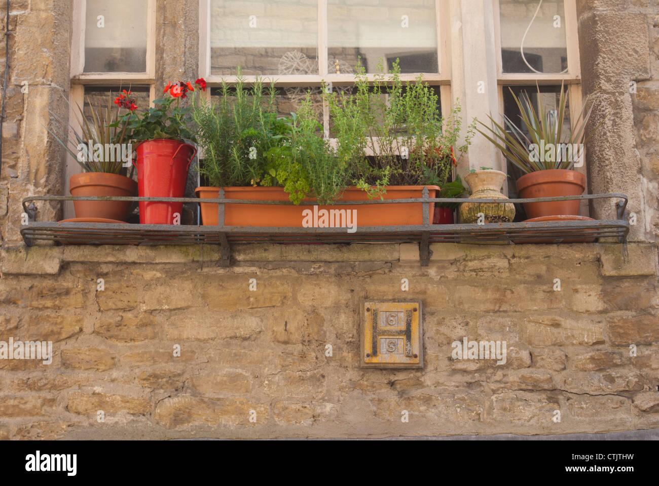 Urban window box. - Stock Image