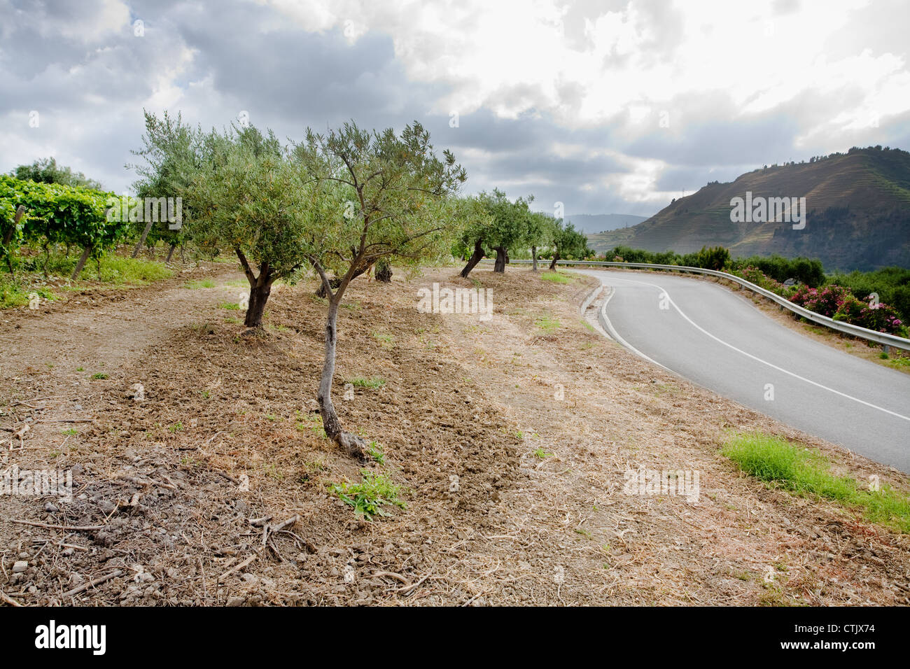 Gentle Slope Stock Photos & Gentle Slope Stock Images - Alamy