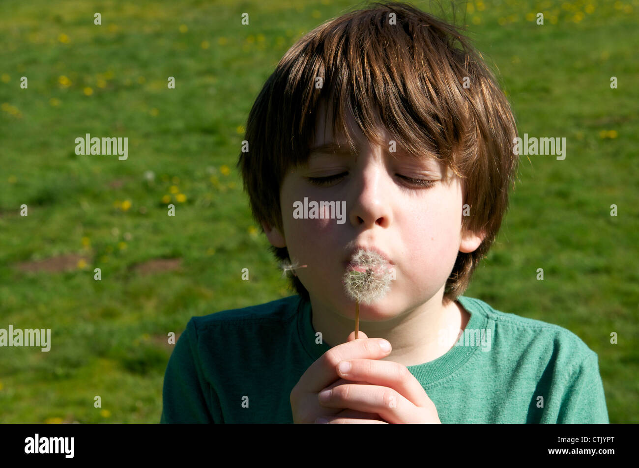 Boy makes a wish by blowing dandelion seeds - Stock Image