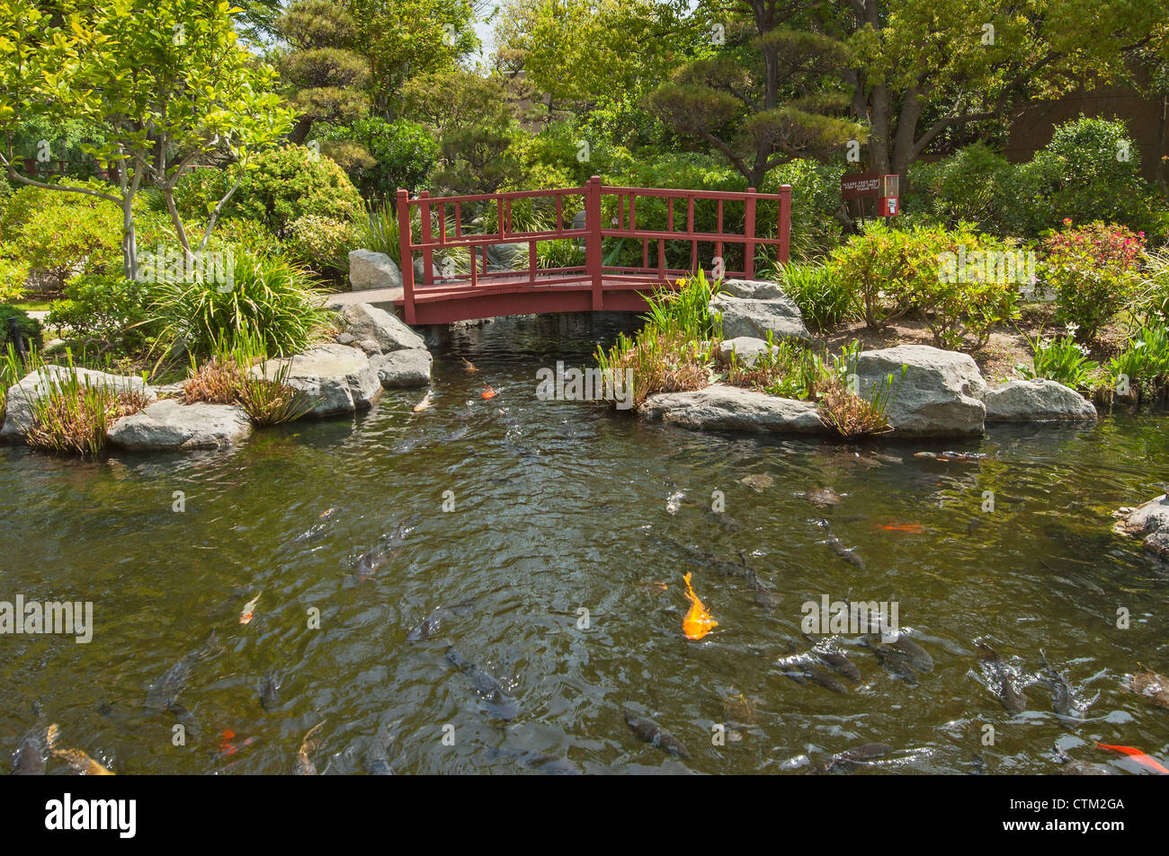 The beautiful Japanese Gardens located in the City of Hope Cancer ...