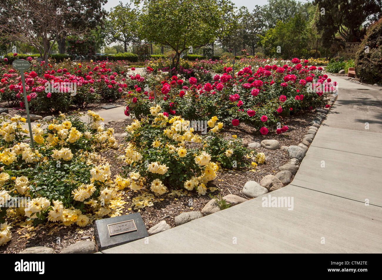 The beautiful Rose Garden at City of Hope Cancer Center is a calm ...