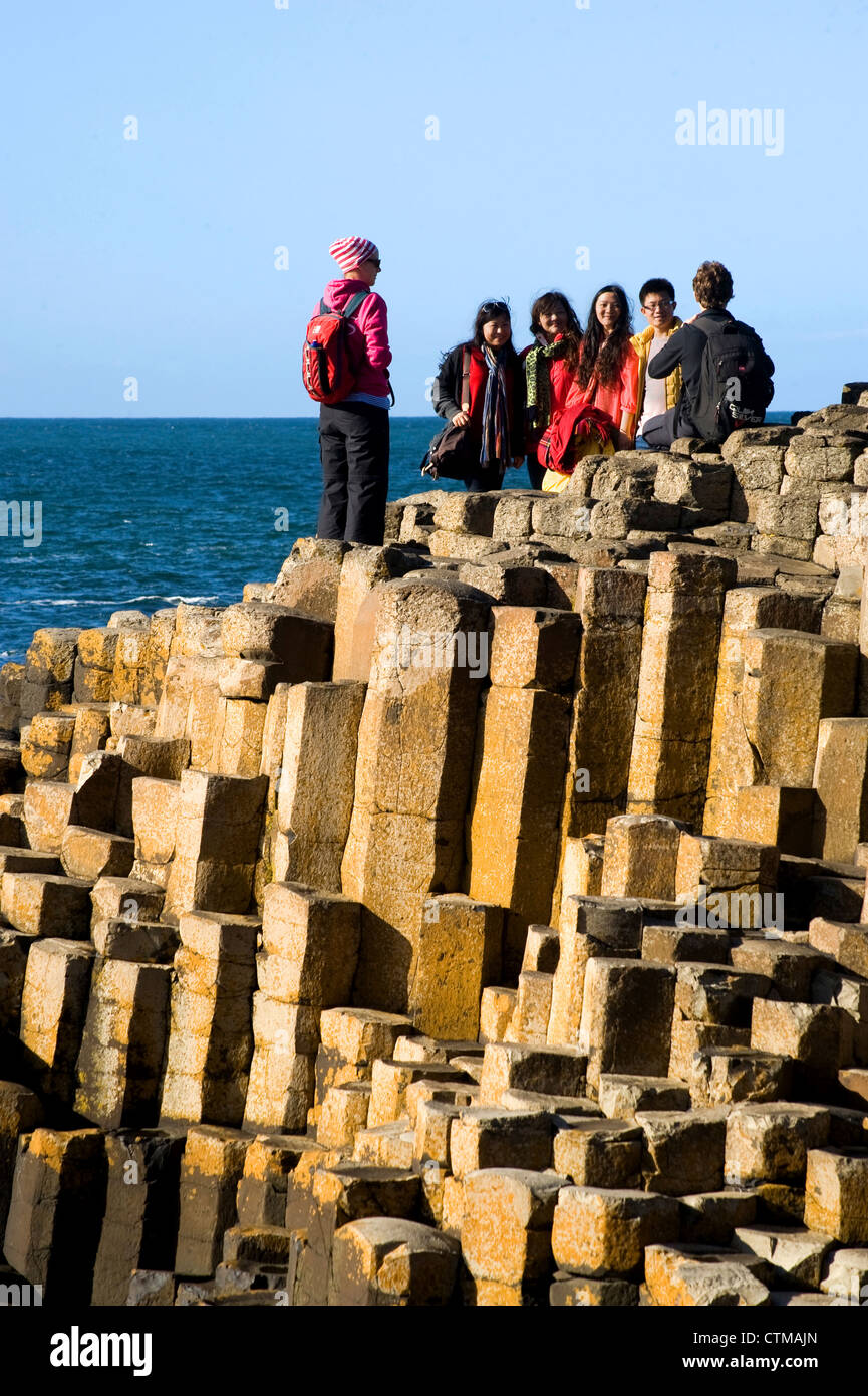 Giant's Causeway, Northern Ireland - Stock Image