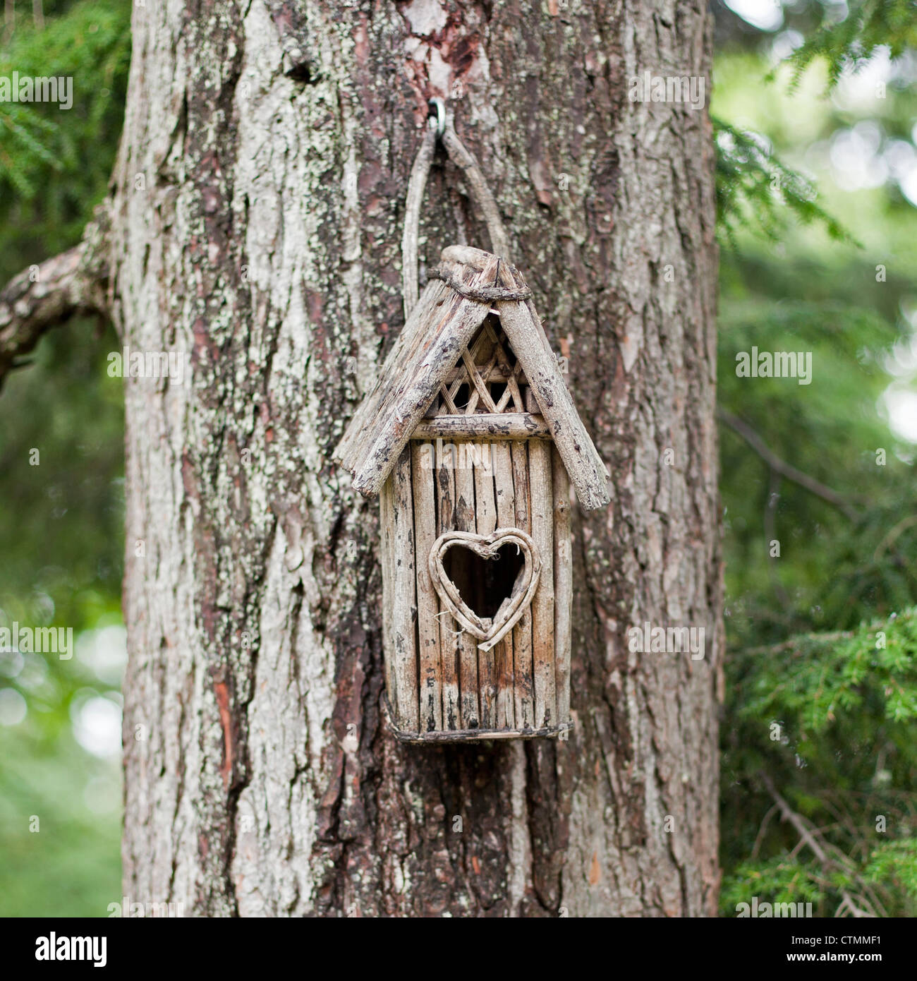 A handmade wooden birdhouse with a heart shaped opening hangs on a tree. - Stock Image