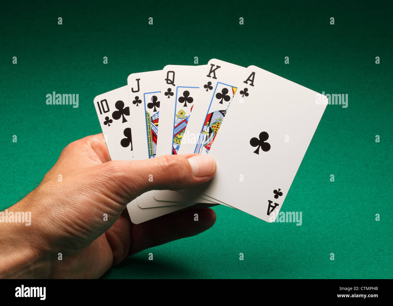 A man's hand holding playing cards on a green table. A Royal Flush of clubs in the game of Poker - Stock Image