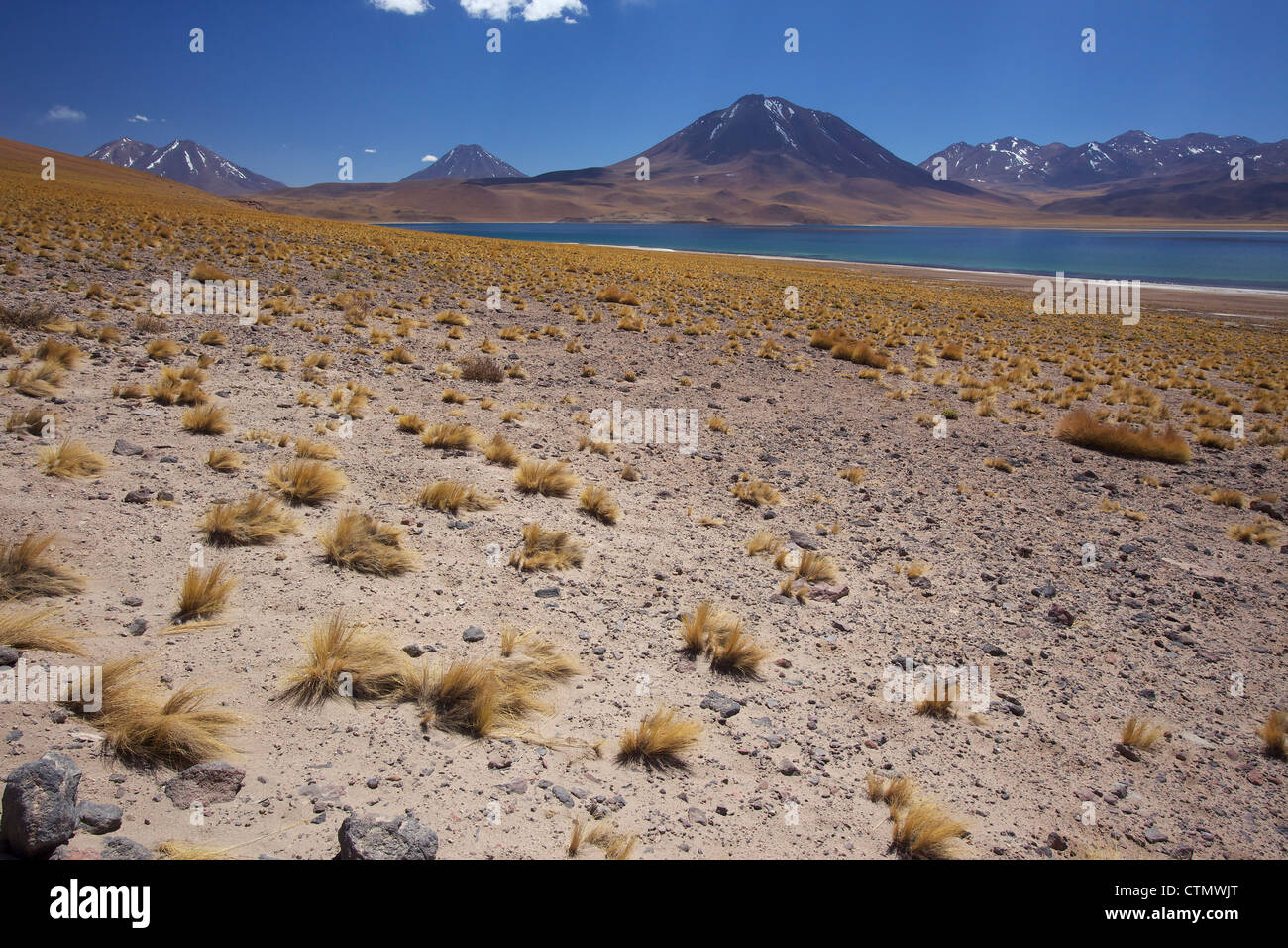 View of the Laguna Miscanti at an altitude of 4300m, Los Flamencos National Reserve, Chile, South America - Stock Image