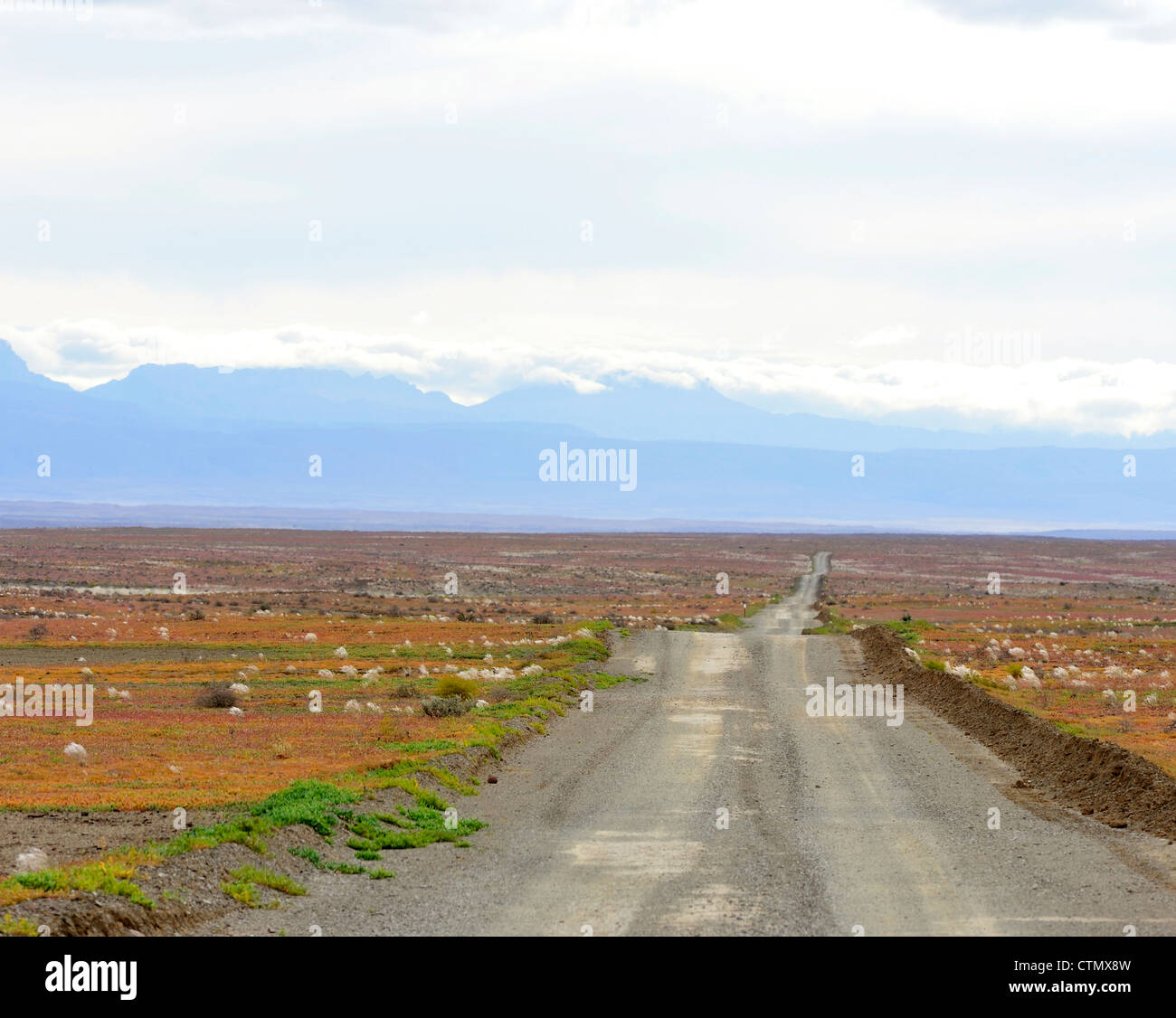 Long Road towards the Cederberg, Tankwa Karoo, Western Cape, South Africa - Stock Image