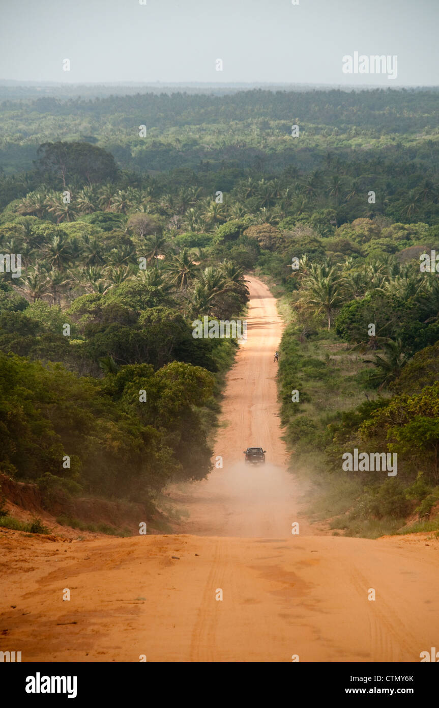 Road through jungle,  Zavora, Mozambique - Stock Image