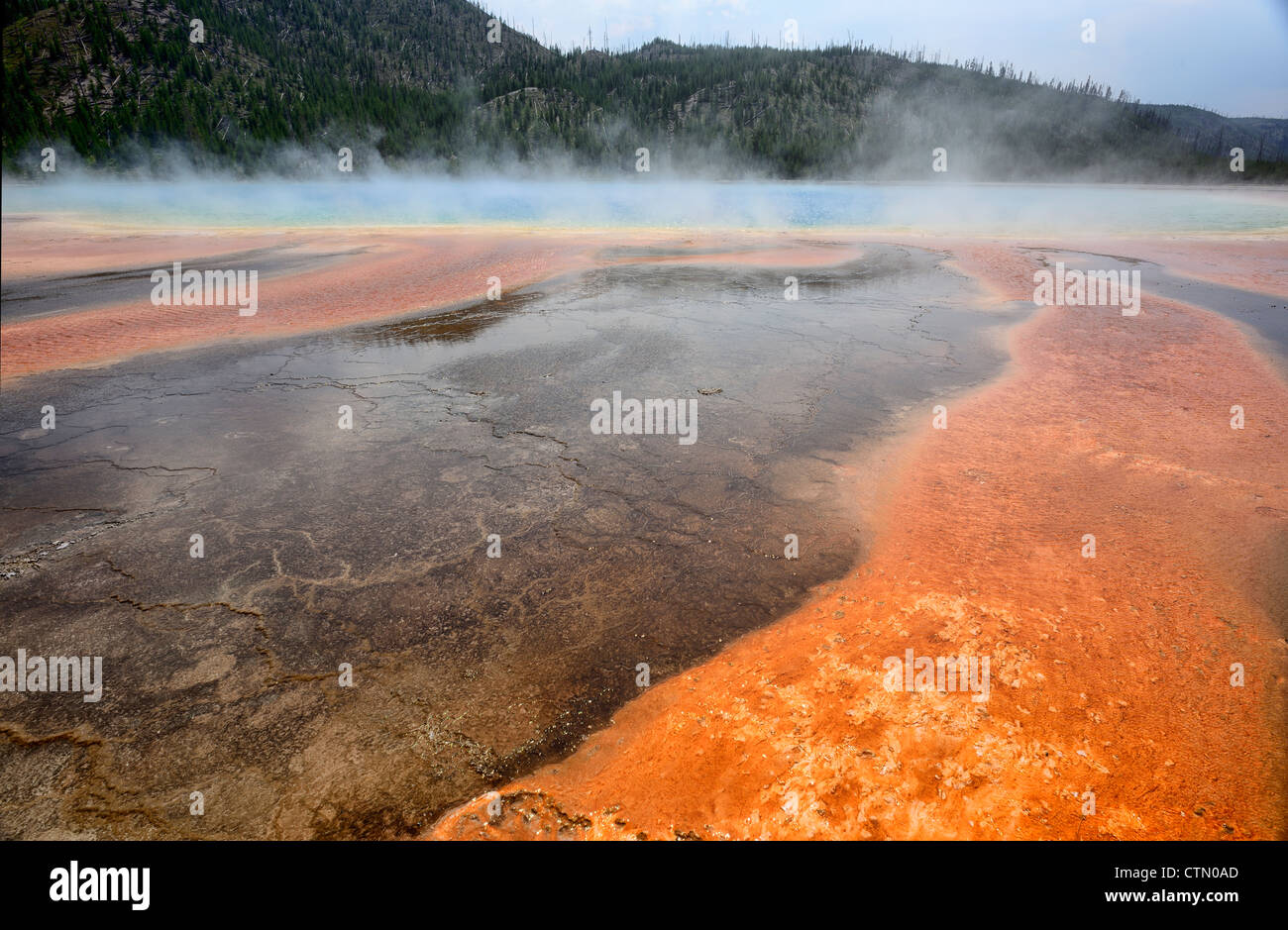 Grand Prismatic Spring and abstract patterns in mud, Midway Geyser Basin, Yellowstone National Park, Wyoming, USA - Stock Image