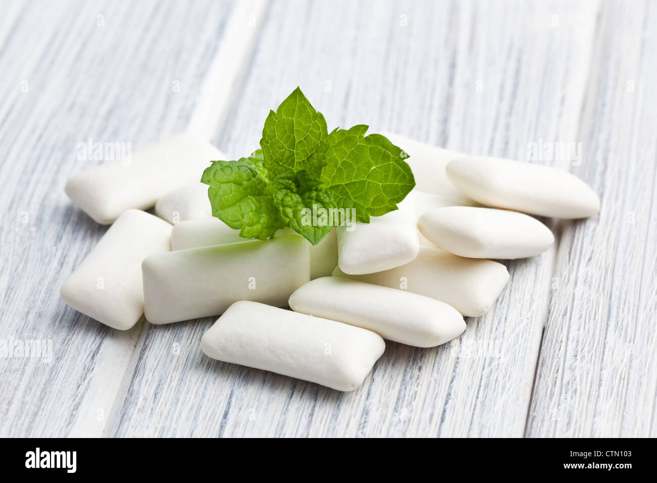 the mint leaves and the chewing gum - Stock Image