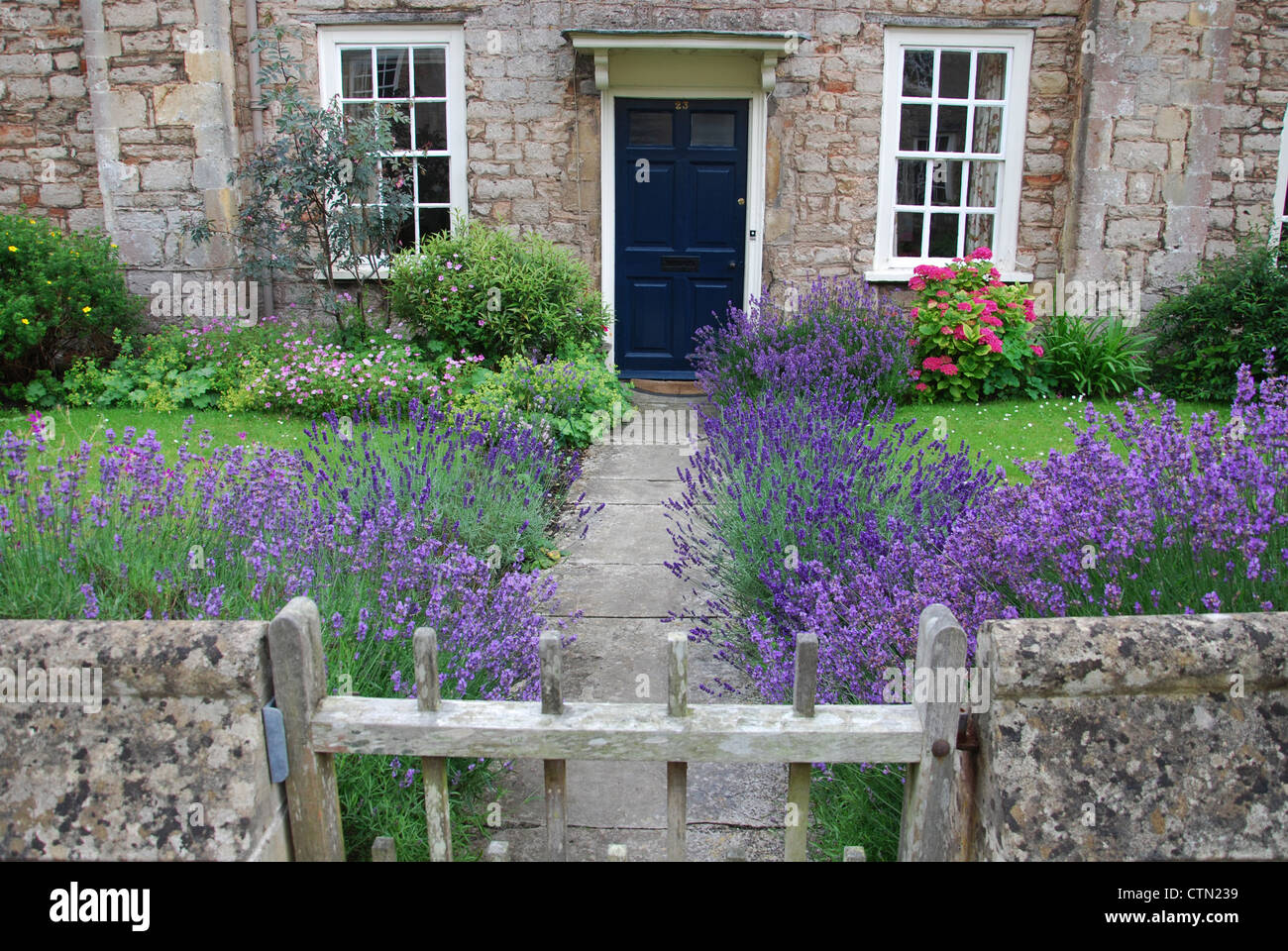front door in Vicar's Close, Wells United Kingdom - Stock Image