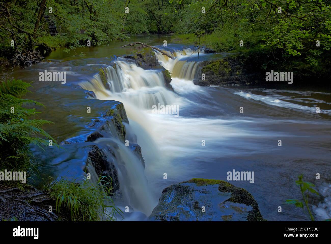 Moss Covered Sgwd Ddwli Uchaf Waterfalls On The River Neath Pontneddfechan In South Wales