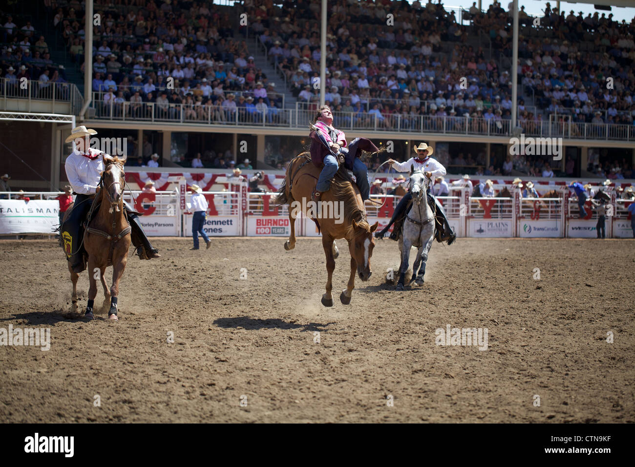 A rodeo clings onto his horse at the Calgary stampede event
