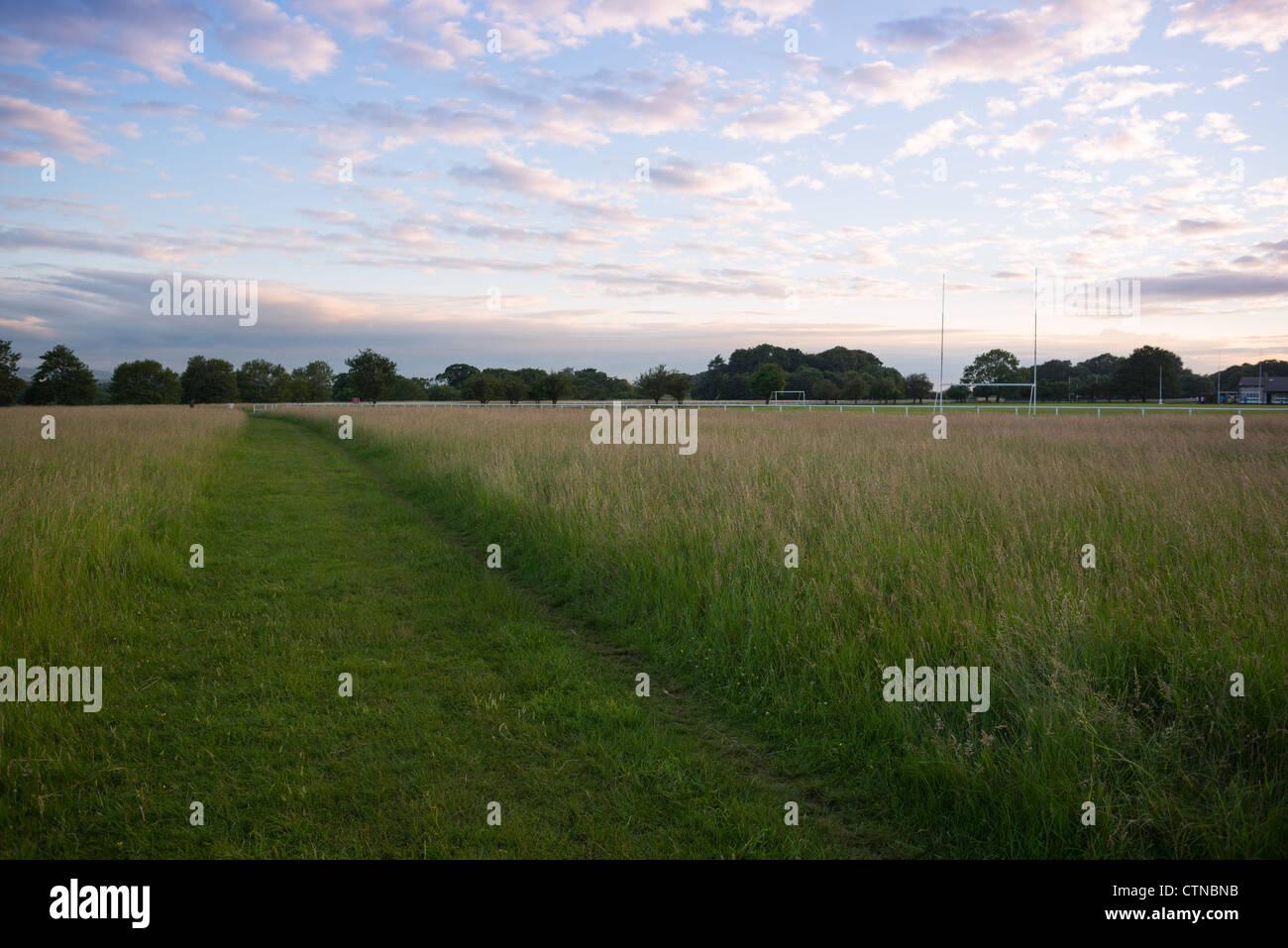 Phoenix Park, Dublin, Co Dublin, Ireland. - Stock Image