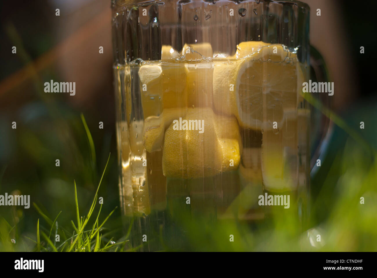 A Large glass jug of lemons and water, on the grass. - Stock Image
