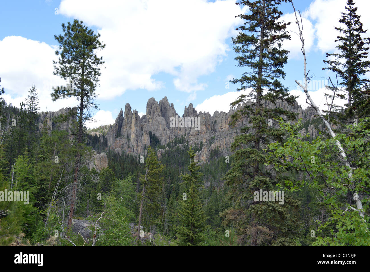 The beautiful scenic highway 85 through the needles area of Custer State Park, South Dakota - Stock Image