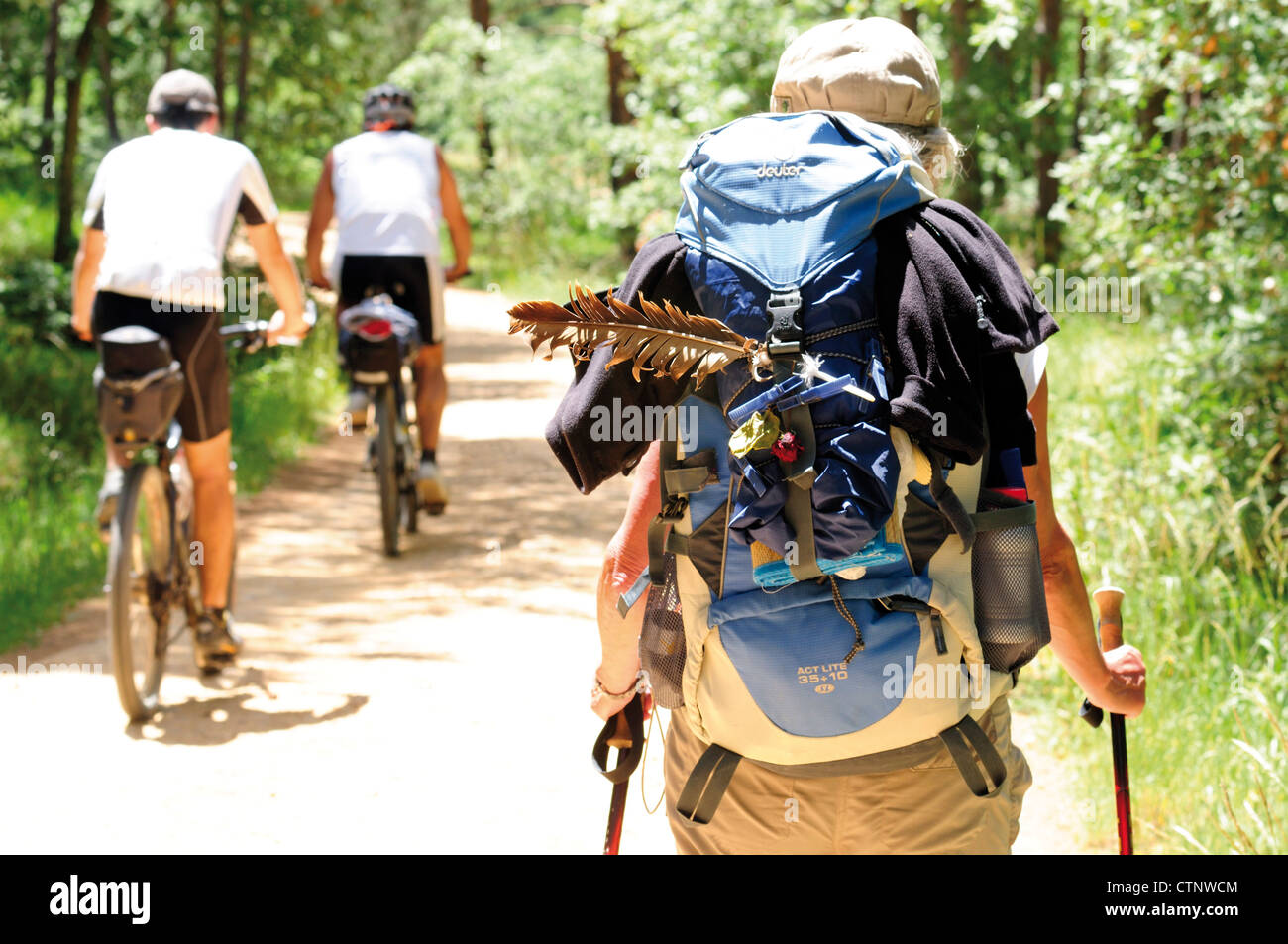 Spain, St. James Way: Pilgrims on their way to Santiago de Compostela - Stock Image
