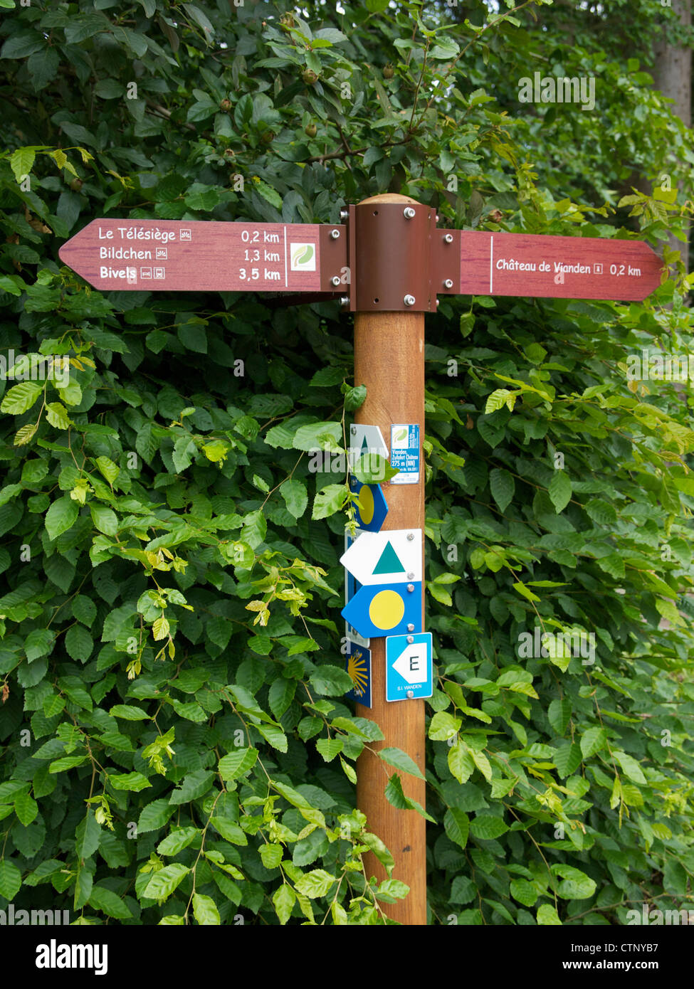 Walking routes sign near Vianden, Luxemburg. It even has a badge of the camino, the pilgrims road to Santiago de - Stock Image