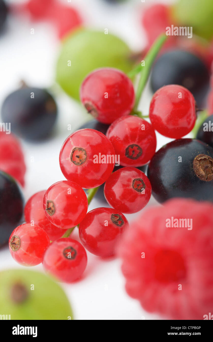 Spilled mixed berries on white background whith a raspberry in the foreground in focus. - Stock Image