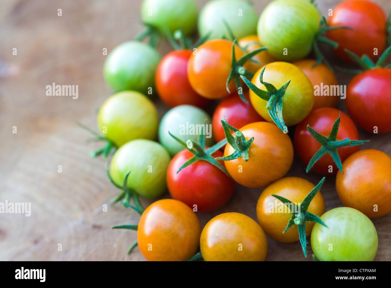 This is an image of Cherry Tomatoes - Stock Image