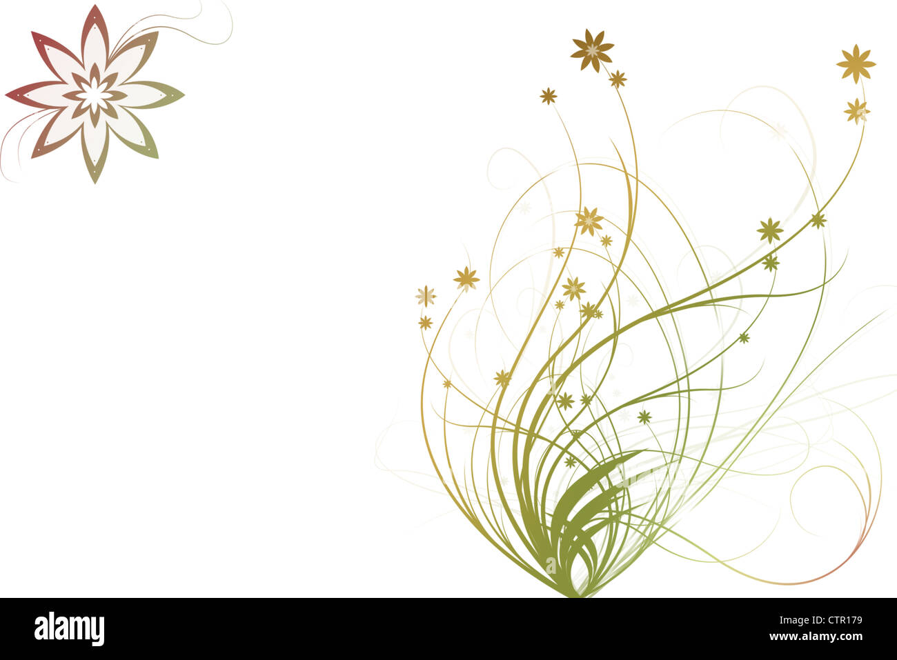 Beautiful illustrated flower background design with space for your text - Stock Image