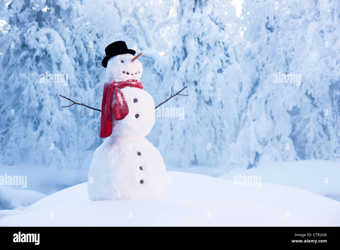 Snowman standing amongst hoar frosted trees Russian Jack Springs Park Anchorage Southcentral Alaska Winter Digitally - Stock Image