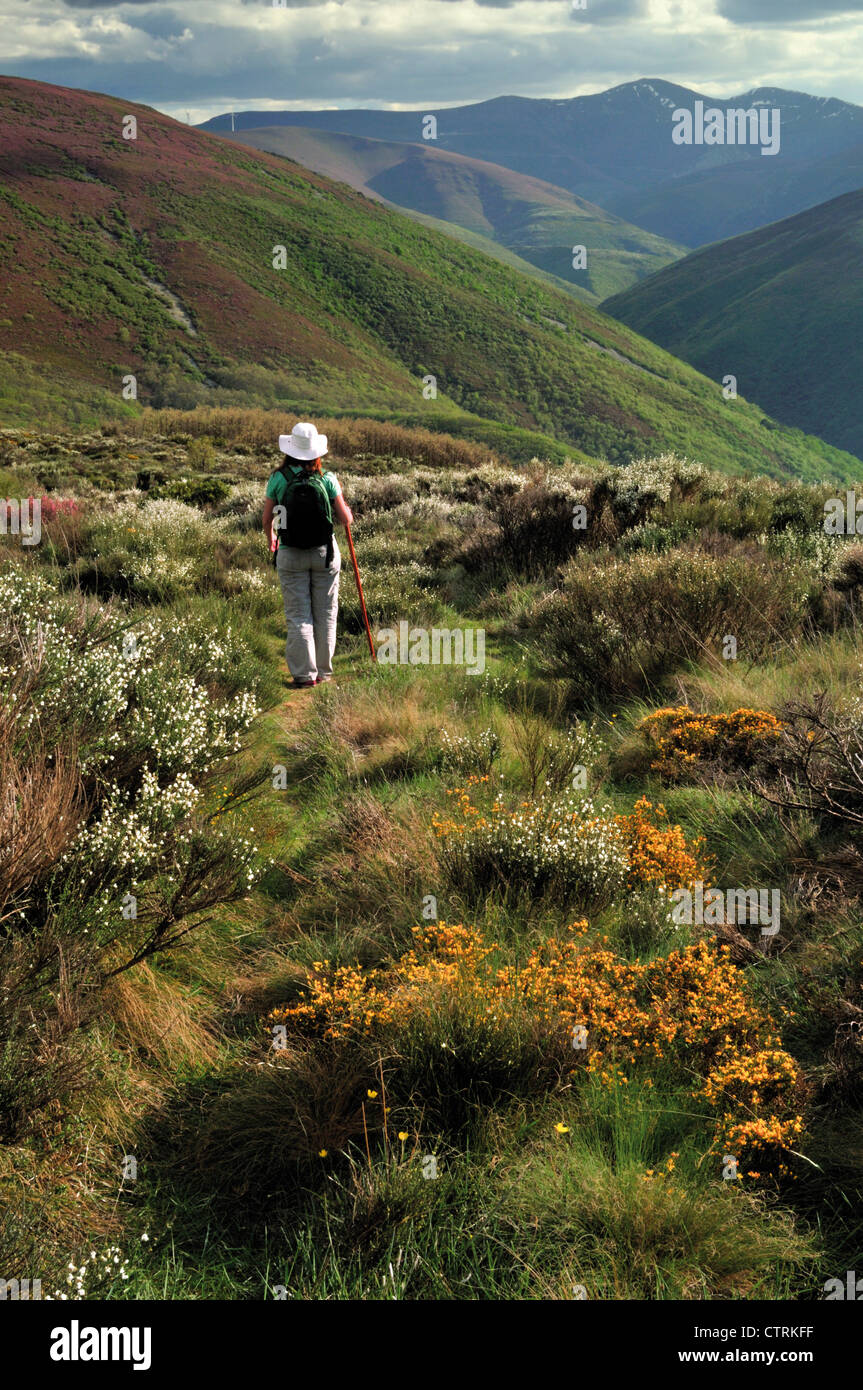 Spain, St. James Way: Woman walking on natural path with view to the Montes de Leon - Stock Image