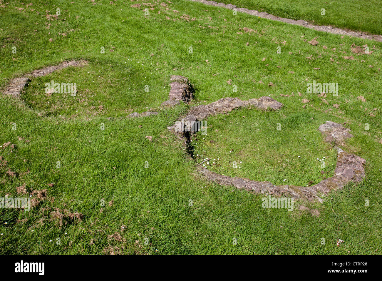 The circular stone remains of the ovens in the Roman LEgionary Barracks at Caerleon, Wales - Stock Image